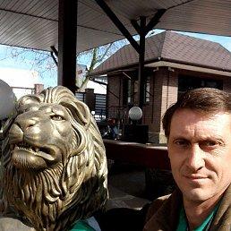 Дмитрий, 43 года, Ульяновск