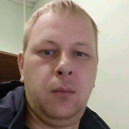 Андрей, Ярославль, 38 лет