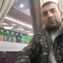 Али, 32 года, Нижний Новгород