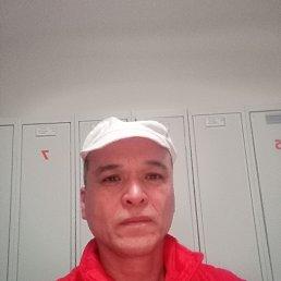 Миша, 53 года, Тула