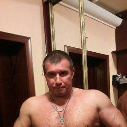 AL, 53 года, Бровары
