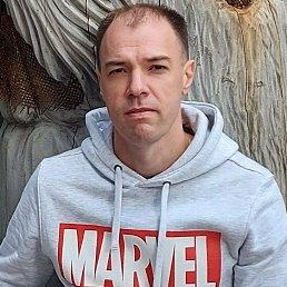Максим, 39 лет, Томск