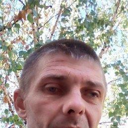 НИКОЛАЙ, 41 год, Каменка