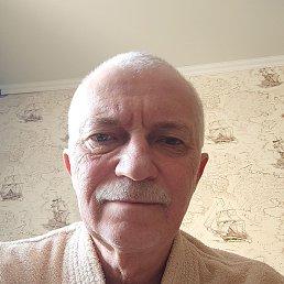 Сергей, 64 года, Подольск