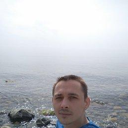 Александр, 32 года, Апрелевка