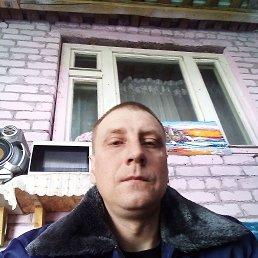Андрей, 33 года, Елец
