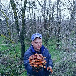 Максим, 37 лет, Сальск