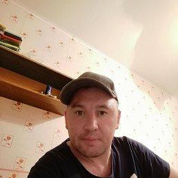 Роман, 36 лет, Липецк