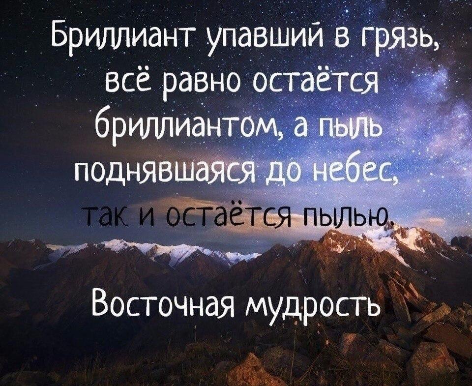 Жизнь в цитатах