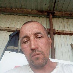 Вова, 43 года, Краснодар