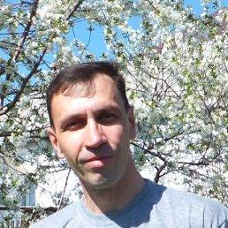 Николай, 50 лет, Липецк