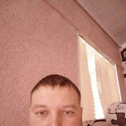 Алекс, 30 лет, Тамбов