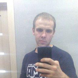 Алексей, 31 год, Томск