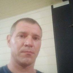 Владимир, 43 года, Тверь