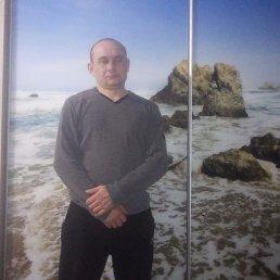 Алексей, 41 год, Балашиха