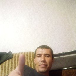 Николай, 37 лет, Кировоград