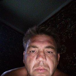 Сергей, 44 года, Елец