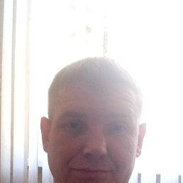 Денис, 41 год, Коркино