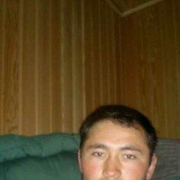 Алижон, 29 лет, Красноярск