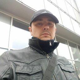 Виктор, 37 лет, Житомир