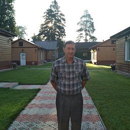 Александр, 66 лет, Димитровград