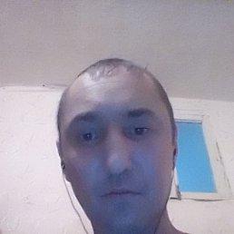 Сергей, Саратов, 35 лет