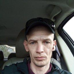 Роман, 41 год, Липецк