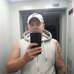 Дмитрий, 40 лет, Калининград