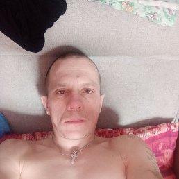 Антон, 37 лет, Барнаул