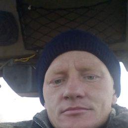 Александер, 35 лет, Коростень