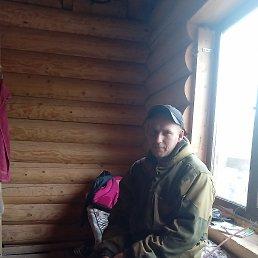 Дмитрий, 29 лет, Тула
