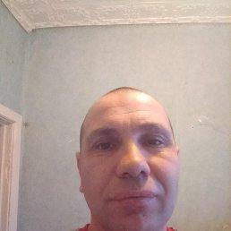 Sergey, 40 лет, Курск