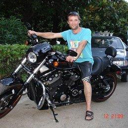 Алексей, 38 лет, Балашиха