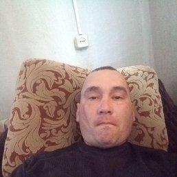 Миша, 27 лет, Томск