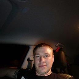 Алексей, 41 год, Грязи