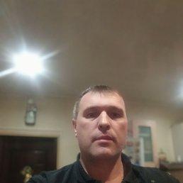 Саша, Жарковский, 47 лет