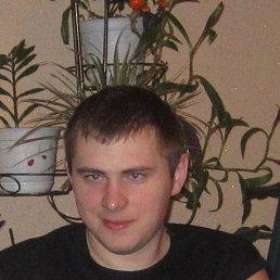 Максим, 31 год, Томск