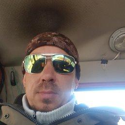 димас, 39 лет, Хабаровск