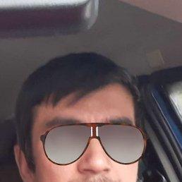 Илья, 33 года, Талдом