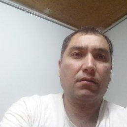 Баха, 45 лет, Наро-Фоминск