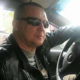 Дмитрий, 45 лет, Димитровград