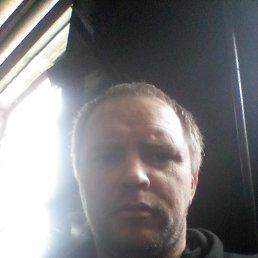 Дмитрий, 39 лет, Тула