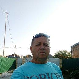 Андрей, 58 лет, Краснодар