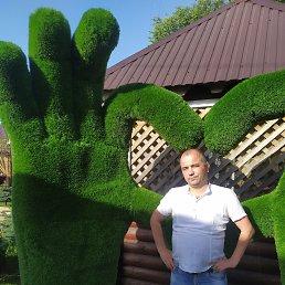 Игорь, 33 года, Козловка
