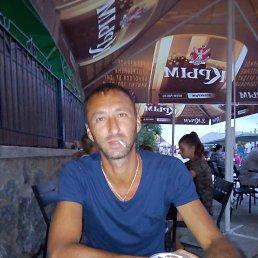 Артём, 33 года, Краснодон