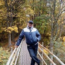 Александр, 50 лет, Калининград