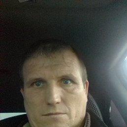 Андрей, 41 год, Сафоново