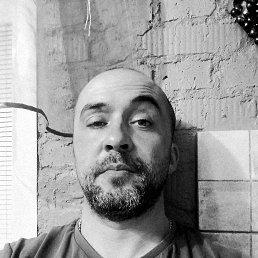 Саша, 37 лет, Тула
