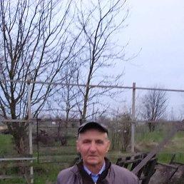 Владимир, 65 лет, Краснодар