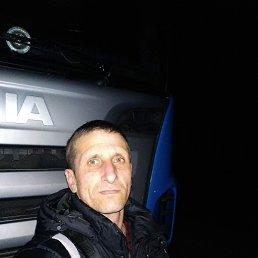 Андрей, 38 лет, Коростень